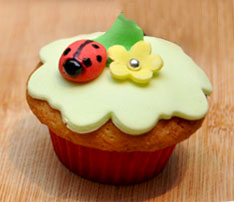 Kids Birthday Cupcakes with Flowers and Ladybugs